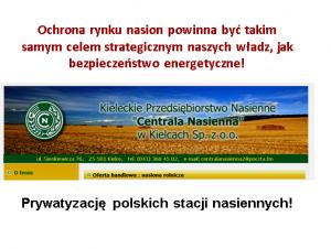 Prywatyzacja Centrali nasiennych